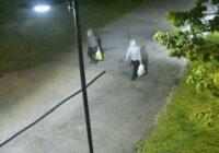 Pašvaldības policisti pieķer divus Grīziņkalna puķu dobju postītājus