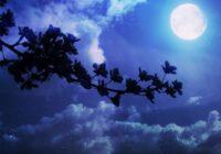 Visspēcīgākais pilnmēness sāksies 2020. gada 31. oktobrī. Pastāstīsim ko labāk šajā laikā darīt un ko labāk atstāt priekš vēlāka laika