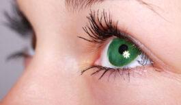 Cilvēki ar zaļām acīm: 10 interesanti fakti par viņiem, kurus tu, visticamāk, nezināji. Zaļacainie cilvēki ir labākie vecāki pasaulē
