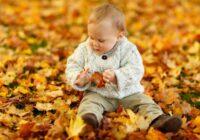 Kāpēc nevajadzētu fotografēties rudens dzeltenajās lapās: acīmredzams iemesls, par kuru neviens nedomā