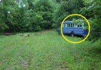 Tēvs ar dēlu mežā atrada pamestu autobusu. Ejot klāt nebija nekāda satraukuma, bet viss sākās, kad viņi iegāja iekšā
