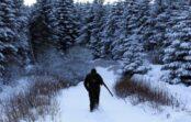 Aknīstes novadā 7 medniekiem piemēro naudas sodu par pulcēšanās ierobežojumu pārkāpumiem