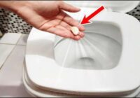 Kāpēc pirms gulētiešanas jāiemet tualetes podā ķiploku daiviņu. Liekas stulbi, bet tici man tu tā arī darīsi